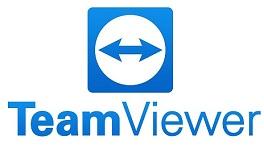 TeamViewer License LifeTime